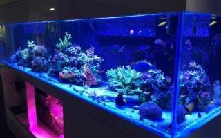 Подсветка аквариума светодиодной лентой