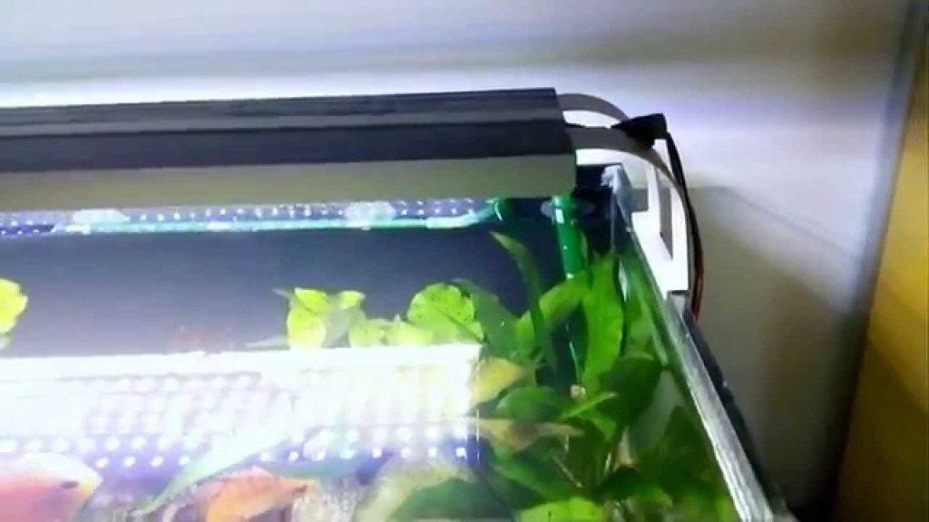 подсветки аквариума светодиодной лентой